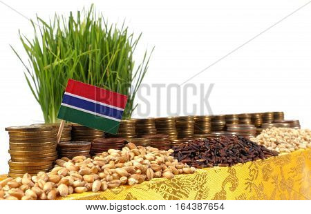 Gambia Flag Waving With Stack Of Money Coins And Piles Of Wheat And Rice Seeds