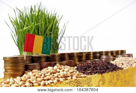 Guinea Flag Waving With Stack Of Money Coins And Piles Of Wheat And Rice Seeds