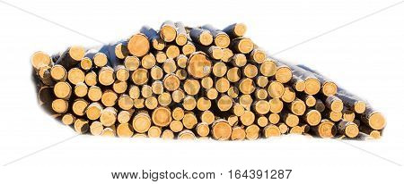 Sawlogs to produce general-purpose lumber on white background