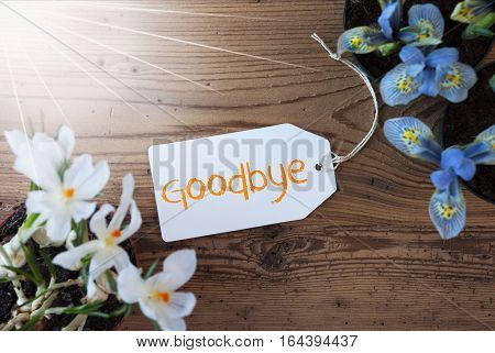 Sunny Label With English Text Goodbye. Spring Flowers Like Grape Hyacinth And Crocus. Aged Wooden Background
