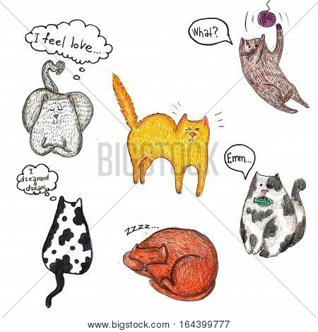 Raster cute cartoon set of different emotional cats isolated on white. Design element, cats and animal themes