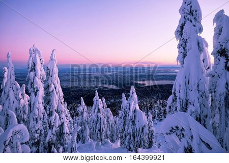 Snow on trees at sunset and city views. Grouse Mountain Park. North Vancouver. British Columbia. Canada.