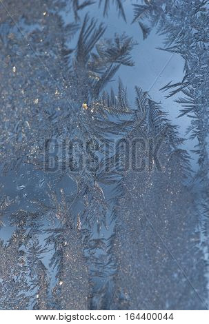 Close up of intricate, textured ice crystals with a fern or leaf like appearance on a window pane with blue sky in the background. Photographed in natural light with shallow depth of field.