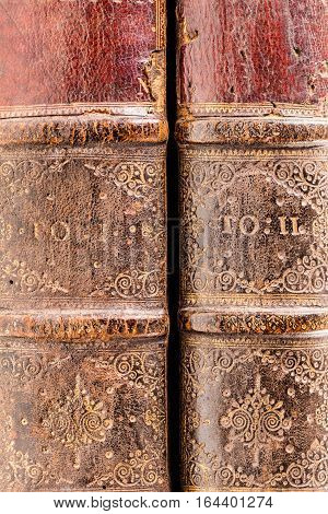 Old Books Spines
