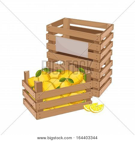 Wooden box full of lemon isolated on white background vector illustration. Fresh fruit, organic farming, vegan food, delivery farm product, grocery store. Yellow ripe lemon in wooden crate icon.