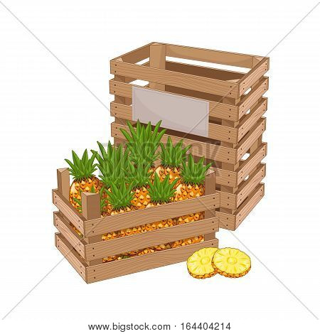 Wooden box full of pineapple isolated on white background vector illustration. Fresh fruit, organic farming, vegan food, delivery farm product, grocery store. Ripe pineapple in wooden crate icon.