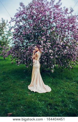 Portrait of young beautiful woman wearing long evening dress posing in spring blossom trees. Professional make-up and hairstyle. Perfect skin. Fashion photo.