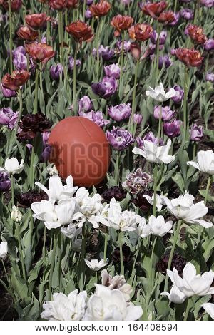Vertical of a bed of purple mauve white and red tulips with a single red balloon among them on a bright sunny day in May at the Tulip Festival in Ottawa, Ontario.