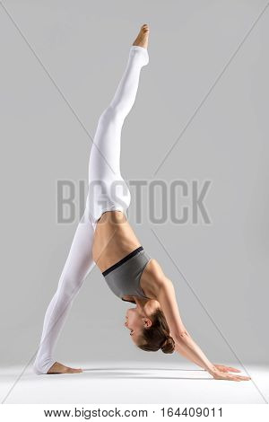 Young woman practicing yoga, stretching in one legged downward facing dog exercise, eka pada adho mukha svanasana pose, working out wearing sportswear, indoor full length, grey studio background