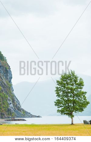 Mountains And Fjord On Foggy Day Norway
