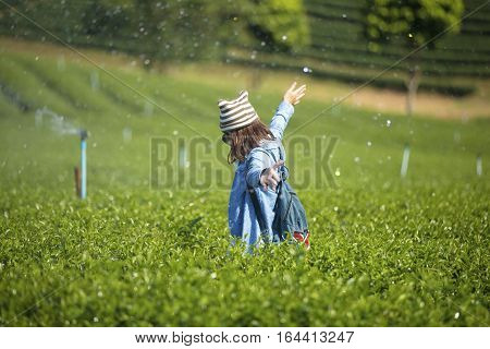 A Traveler enjoying in the tea plantation.