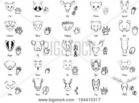 Black-white set of 25 animals and tracks