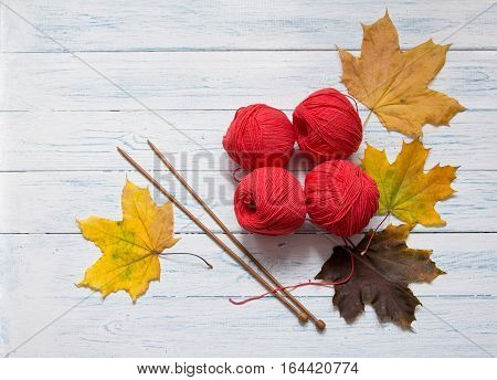 Red yarn wooden knitting needles and yellow leaves are on white vintage wooden desk with place for your text.