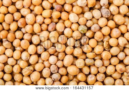 The brown mustard seeds abstract as background.