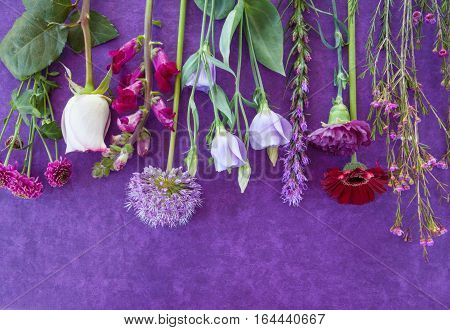 Variety of fresh flowers on a purple background