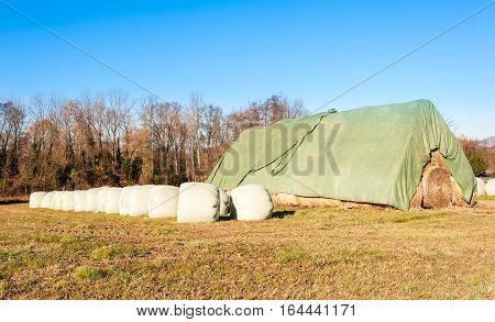 Hay Bales In Row In Provisional Barn