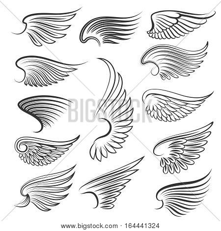 Vector wings isolated on white background. Cartoon tattoo, tribal and vintage heraldic wing set. Collection of wings birds illustration