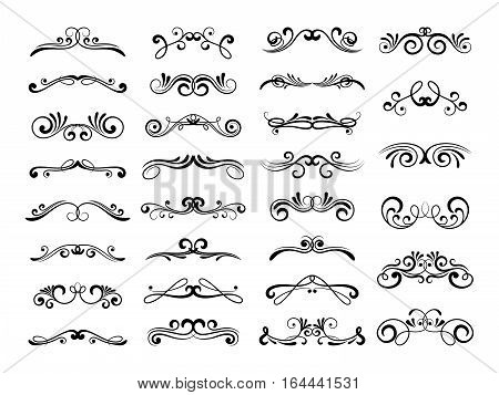 Filigree swirly ornaments. Vector victorian ornamental swirls and simple lines scrolls. Ornamental caligraphy embellishment illustration