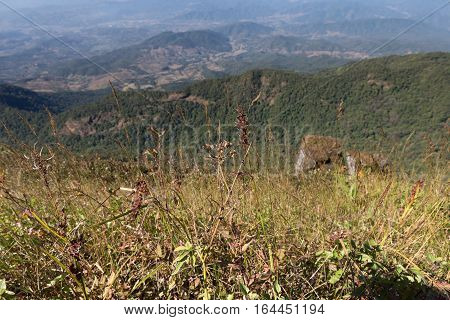 Mountain View At Kew Mae Pan Nature Trail (doi Inthanon National Park) In Winter Season In Chiangmai