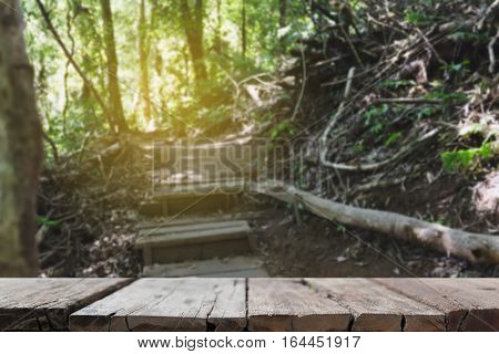 Walkway In Forest At Kew Mae Pan Nature Trail (doi Inthanon National Park) In Chiangmai,thailand (bl