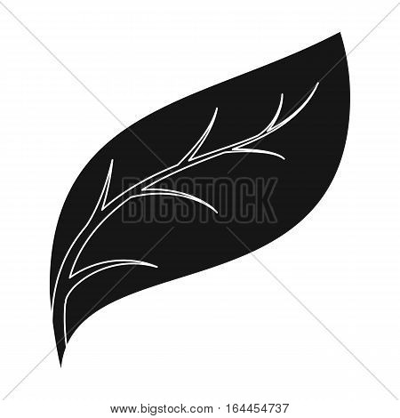 Eco leaf icon in black design isolated on white background. Bio and ecology symbol stock vector illustration.