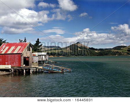 Otago Peninsula NZ