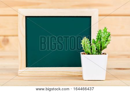 Blank green chalkboard with cactus plant on wooden background ready for your text.
