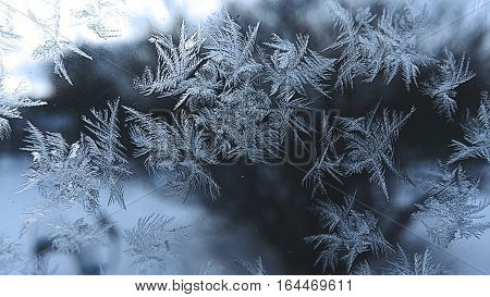 Frosted glass,  frosted window,  ice on the window,  frost,  snowflakes, crystalline