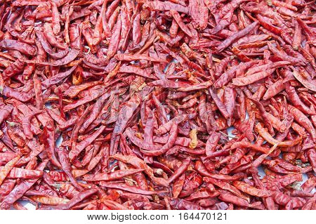 The red dried chilli place on the ground