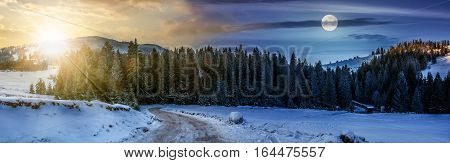 Panorama Of Snowy Road Through Spruce Forest In Mountains