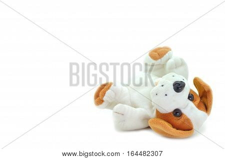 Cute beagle puppy doll sleeping tip on white background.