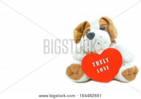 Cute beagle puppy doll showing red heart truly love Happy Valentines for couple love.