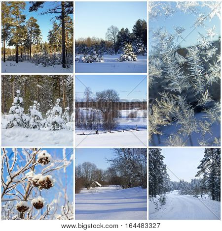 Beautiful winter collage of eight different photos.