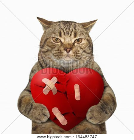 The cute cat is holding a big broken red heart. He glued the heart back together. White background.