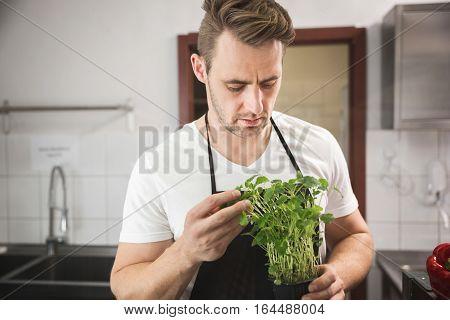 Chef Holding Pot With Lemon Balm