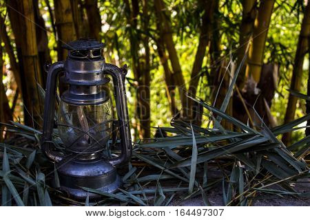 Old explorer lamp with lots of bamboo background