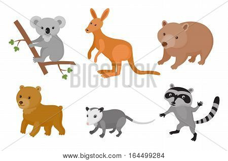 Zoo wild animals colorful set. Vector illustration. Mammals isolate on white background