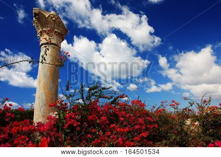An ancient pillar stands tall against a blue sky on the site of Caesarea, Israel.