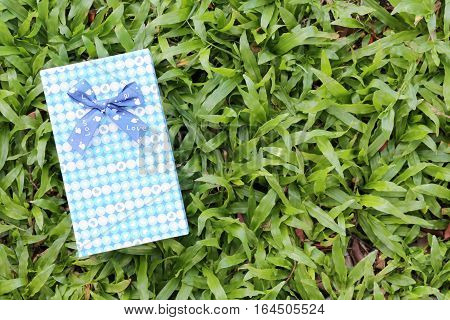 Blue Gift box on green lawnFestival gift concept and Christmas or New Year's Day.