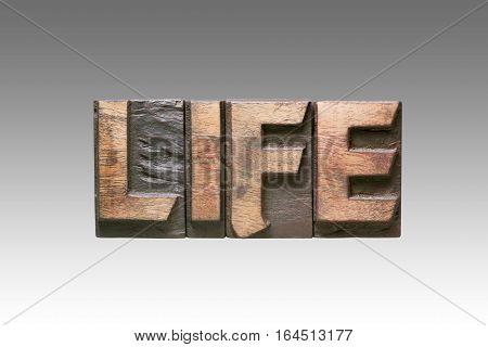 Life Vintage Type