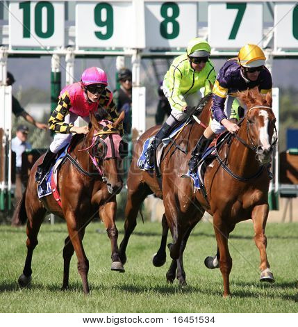 MELBOURNE - FEBRUARY 21: Horses at the start of the De Bortoli Plate, won by On the Scoot at Yarra Glen on February 21, 2010 near Melbourne, Australia.