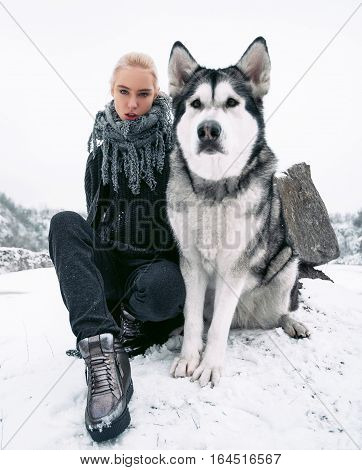 Girl with big malamute dog on background of rocks in winter. They sit on snow. Girl looks very small compared with dog.