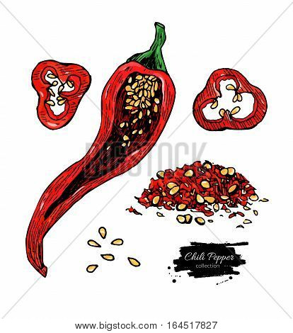 Chili Pepper hand drawn vector illustration. Vegetable artistic style object. Isolated hot spicy mexican pepper, sliced and crushed pieces, seed. Detailed vegetarian food drawing. Eco Farm market product. Paprika icon