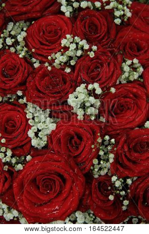 Red roses and gypsophila in a bridal arrangement