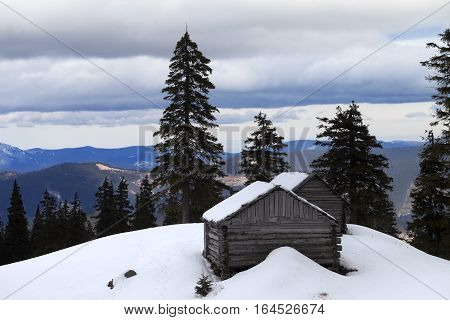 Old wooden hut in winter snow mountains at gray day. Ukraine Carpathian Mountains.