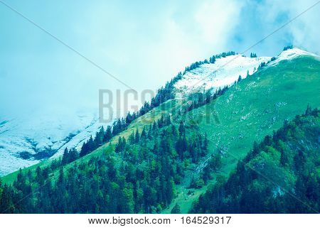 View at mountains lakes and forests near Lozanna town Swithterland