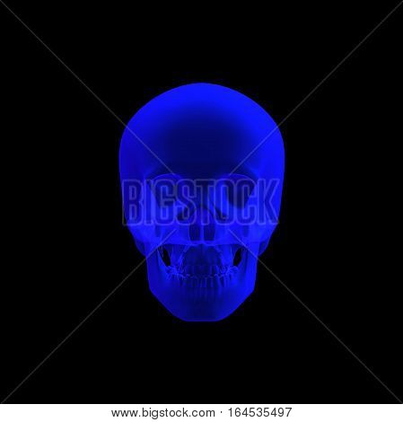 3D rendering of human skull  front view