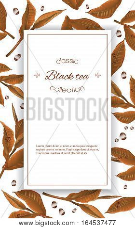 Vector black tea vertical banner with tea leaves and drops on white. Design for packaging, tea shop, drink menu. With place for text