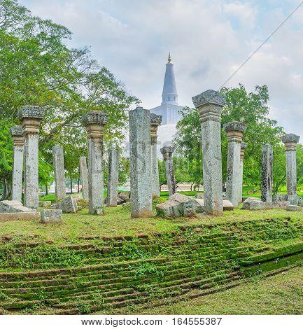 In Garden Of Ruwanwelisaya