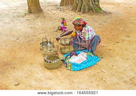 ANURADHAPURA SRI LANKA - NOVEMBER 26 2016: The performance of snake charmer with two cobras in baskets in Mahamevnawa Park on November 26 in Anuradhapura.